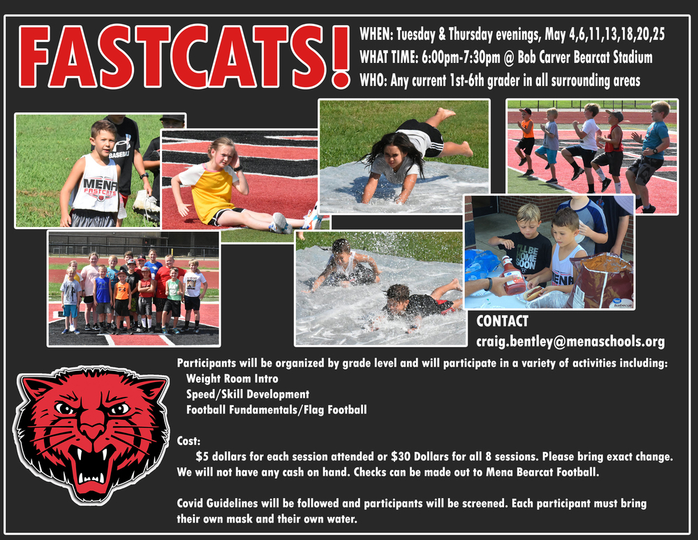 FASTCATS IS BACK !!!!
